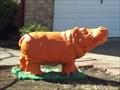 Image for Orange Hippo - Hutto, TX