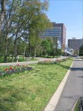 Image for Centennial Park - Nashville, TN