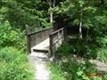 Image for Le petit pont du torrent d'Agneilles- Hautes Alpes