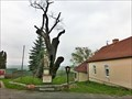Image for Saint Wenceslas' Oak, Stochov, Czech Republic