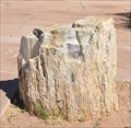 Image for Petrified Log ~ Petrified Forest National Park