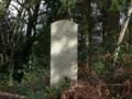 Image for Lustleigh Parish Millennium Bound Stone - Trendlebere Down