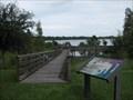 Image for Southern Landing Boardwalk - Lakeland, FL
