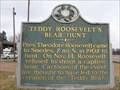 Image for Teddy Roosevelt's Bear Hunt