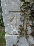Image for Benchmark, All Saints Church - Thorpe Abbotts, Norfolk