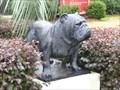 Image for Bulldog - South Carolina State University - Orangeburg, SC