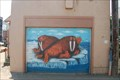 Image for Walrus Door - Anchorage Alaska