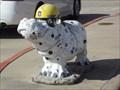 Image for Dalmatian Hippo - Hutto, TX