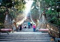 Image for Naga Stairway - Chiang Mai, Thailand