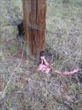 Image for T15S R12E S29 32 E 1/16 COR - Deschutes County, OR