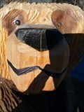 Image for Motel 6 Bear - Flagstaff, Arizona