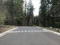 Image for ca / NV at Van Sickle Bi-State Park - Stateline, NV