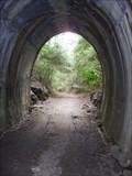 Image for Dularcha Railway Tunnel - Mooloolah, QLD, Australia