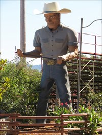 Cowboy Willy with W Branding Iron, Willits, California