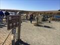 Image for Elephant Seal Boardwalk and Trail - San Simeon, CA