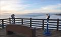 Image for Oceanside Pier Binoculars #4
