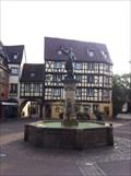 Image for Fontaine Schwendi - Colmar, Alsace, France