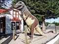 Image for Albertosaurus - Old Trail Museum - Choteau, MT