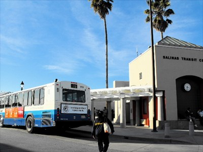 Convenient bus stops with shelter