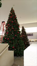 Image for De Vargas Center Christmas Tree - Santa Fe, NM