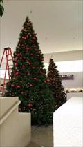 Image for De Vargas Center Christmas Tree - Santa Fe, NM