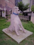Image for Lopsided Pink Dog - Memphis, Tennessee, USA.