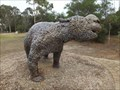 Image for Diprotodon (Naracoorte Caves)
