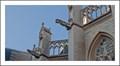 Image for Gargoyles St-Pieters Churh - Leuven -Belgium