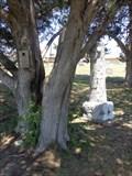 Image for W. L. Wileman - Slidell Cemetery - Slidell, TX