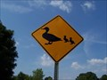 Image for Duck crossing the other way - Nashville TN