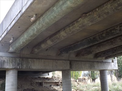 A GOOD view of the substructure of this bridge on Waterfall Way, NSW