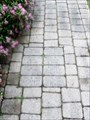 Image for Donated Paver Stones - Exeter, Ontario