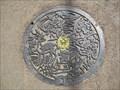 Image for Deer Manhole Cover in Nara Japan