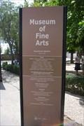Image for Museo de Bellas Artes - Granada, ES