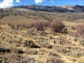 Image for Hamilton Cemetery - Nevada