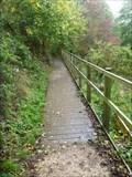 Image for Barnfields Boardwalk - Leek, Staffordshire, UK.