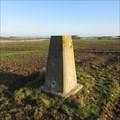 Image for O.S. Triangulation Pillar - West Hills, Angus.