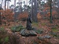 Image for Owl in the Palatinate Forest - RLP / Germany