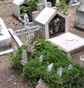Image for Mariano Limachi - Cementerio General - Sucre, Bolivia