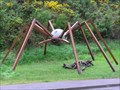 Image for Daddy Long Legs Spider. Wellington. New Zealand.