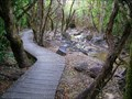 Image for Ketetahi Track Boardwalk on Mt Tongariro. North Is. New Zealand.
