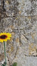 Image for Benchmark - St Mary - Capel St Mary, Suffolk