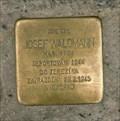 Image for Waldmann Josef, Prague, CZ