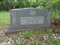 Image for William A. McCants - Old Chatfield Cemetery - Chatfield, TX