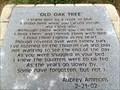 Image for Old Oak Tree - Blue Creek Veterans Memorial Park - Ponce de Leon, FL, USA