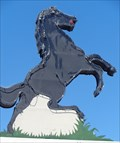 Image for Stallion Sign - Artistic Neon - Victorville, California, USA.
