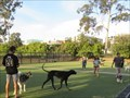 Image for Little Italy Dog Park - San Diego, CA