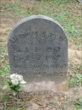 Image for Alerne M. Buttler - Bosque Bello Cemetery - Fernandina Beach, FL