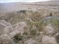 Image for Tinner's Hut - Near Kit Rocks, North Dartmoor.