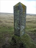 Image for PCWW Boundary Stone, Yellowmead Down, SW Dartmoor